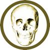 Alexander Streuer - Anatomy Quiz Premium artwork