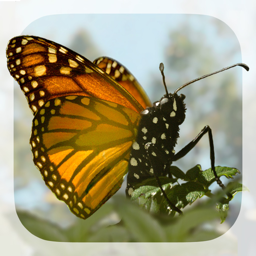 Ícone do app Brian Cox's Wonders of Life