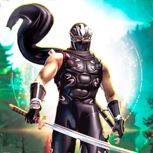 Realistic Shadow Ninja