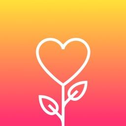 Gratitude: Diary, Vision Board