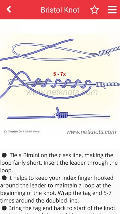 Net Knots screenshot-4