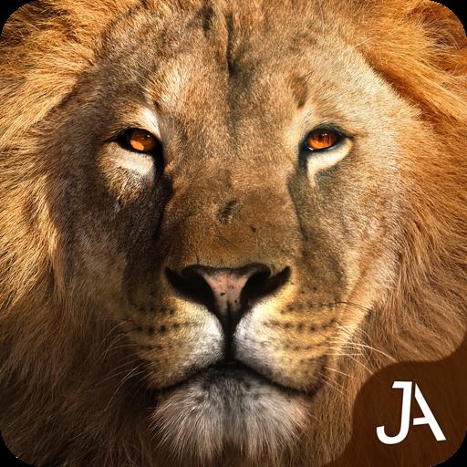 Safari: Online Evolution for 游戏