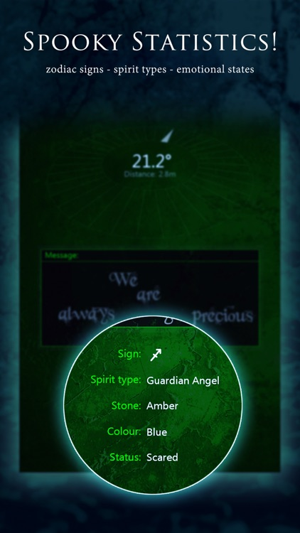 Ghostcom Radar Spirit Detector screenshot-3