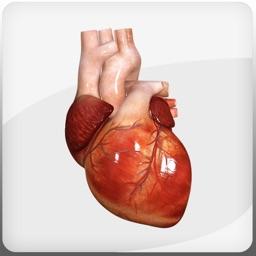 HeartMate 3™ LVAD AR app
