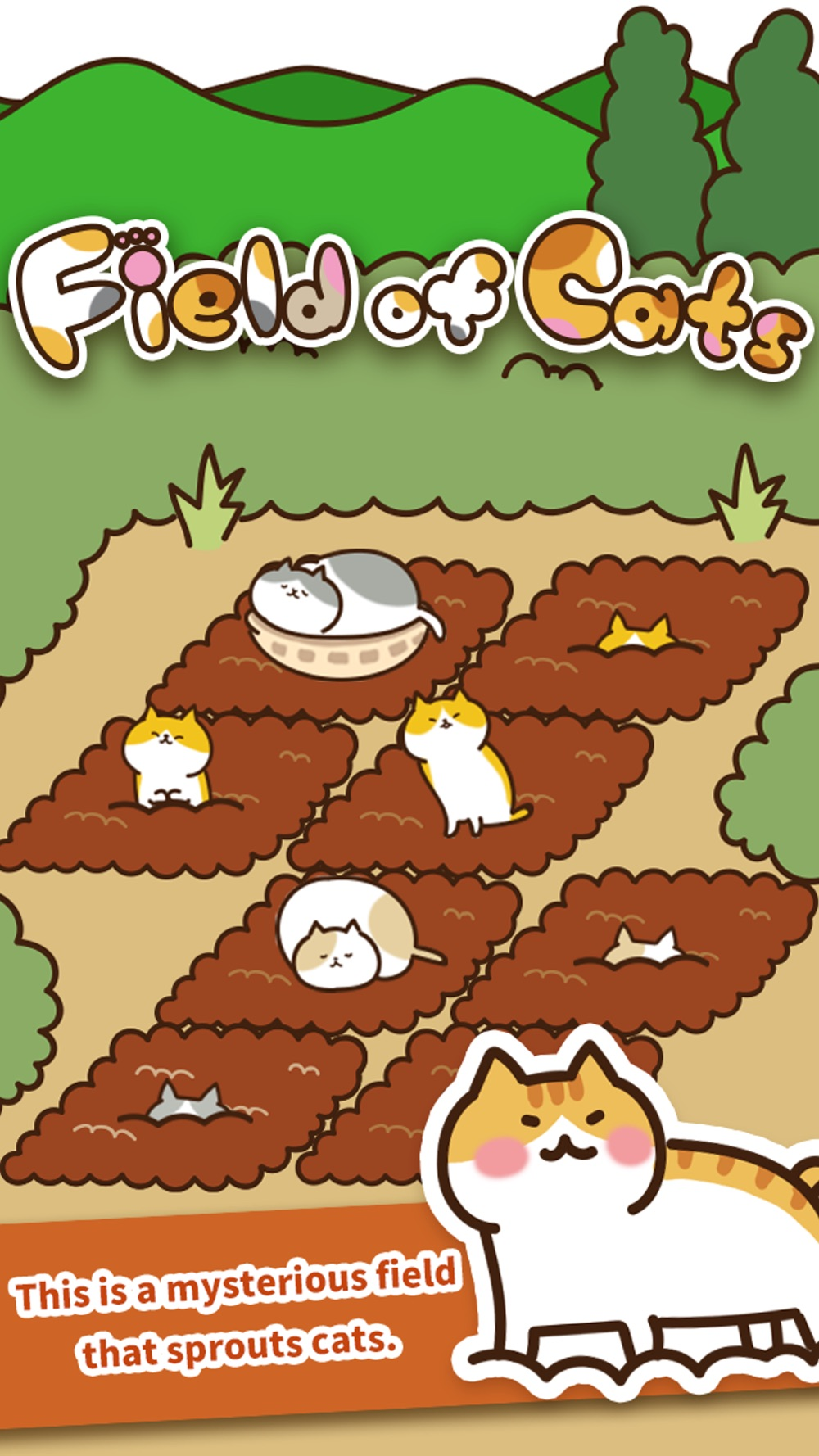 Field of Cats Cheat Codes