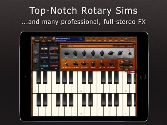 Galileo Organ 2 screenshot 8