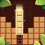 Wood Block Puzzle+ pour pc