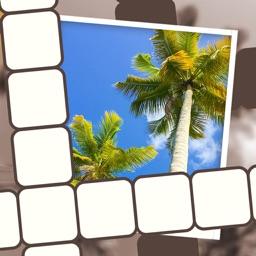 Picture Perfect Crossword