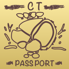 CT Reisepass Herz / MRI / MRT