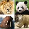 動物クイズゲーム : 動物園全体の日本と世界の動物 - iPadアプリ