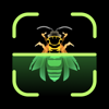 Insect Identifier