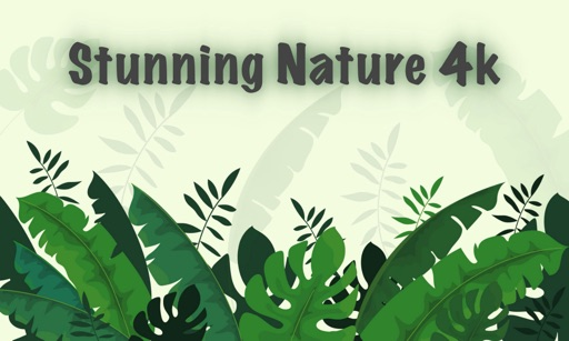 Stunning Nature : 4K Wallpaper