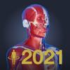 3D人体解剖学 チームラボボディ2021-TEAMLABBODY.inc