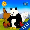 動物大探索:動物世界(完整版) - 兒童教育遊戲