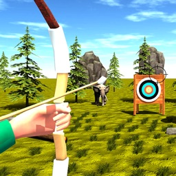 Archer Skill: Shooter Challeng