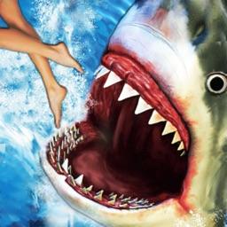 Shark Attack : Fun Fish Games
