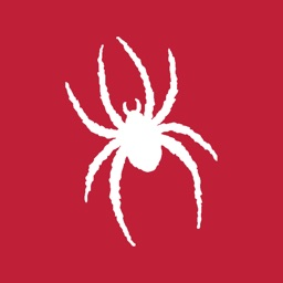 Richmond Spiders Gameday