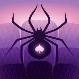Spider Solitaire World