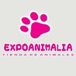 Expoanimalia