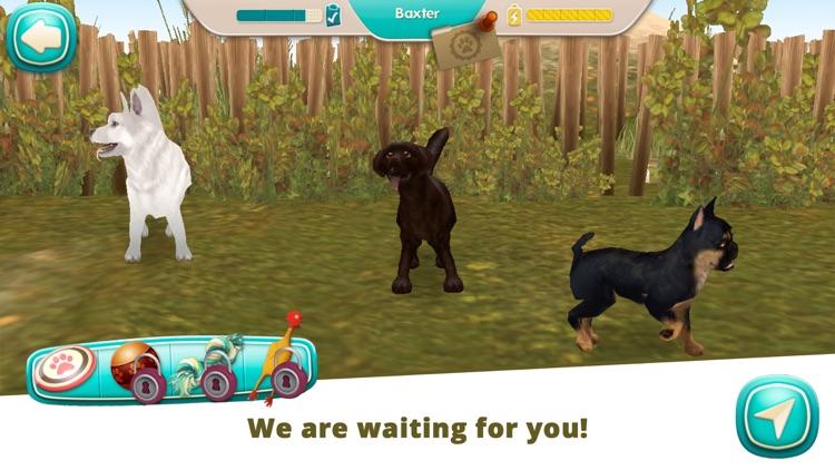 DogHotel Premium screenshot-6