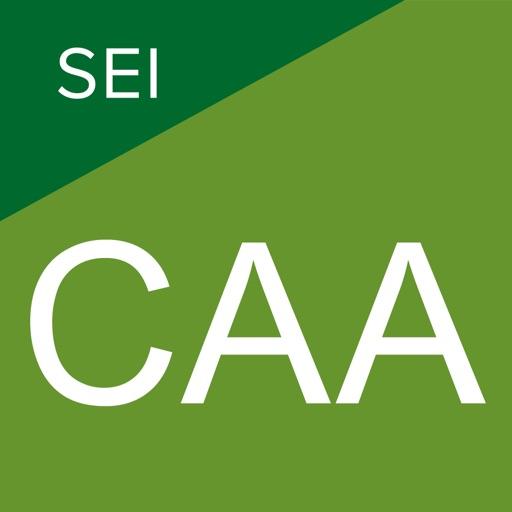 SEI Cash Access