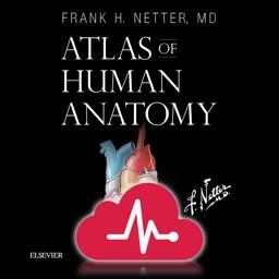 Netters Atlas of Human Anatomy