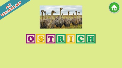 Animal A-Z English Spelling screenshot three
