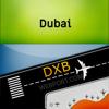 Renji Mathew - Dubai Airport (DXB) Info アートワーク
