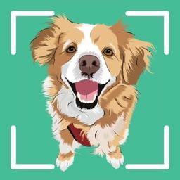 Dog Identifier - Puppy Scanner