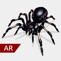 App Icon AR Spinnen