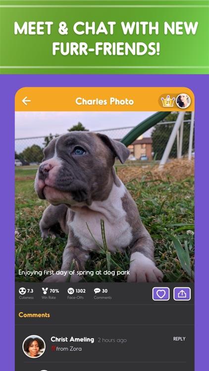 Pet Parade: Cutest Dogs & Cats screenshot-4
