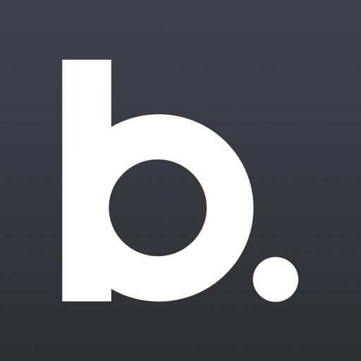 Bud - Your Financial Assistant iOS App