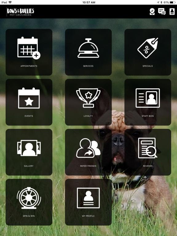 iPad Image of Bows & Bullies