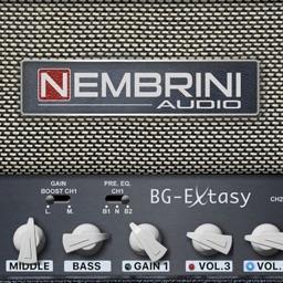 BG Extasy Boutique Amplifier