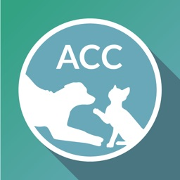 ACC of NYC