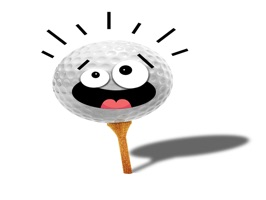 There is no limit to the moods and emotions you feel in a round of golf