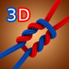 Sergey Burlakov - Animated 3D Knots アートワーク