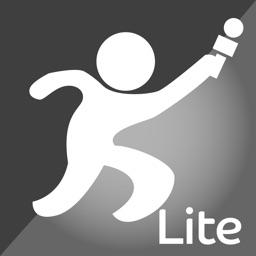 Report-IT Lite