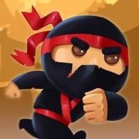 Codes for CLIMBING NINJA GAME Hack