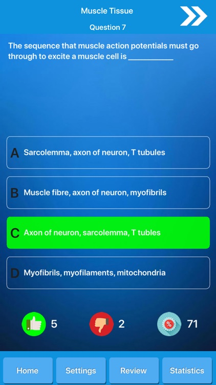 Muscle System Anatomy screenshot-4