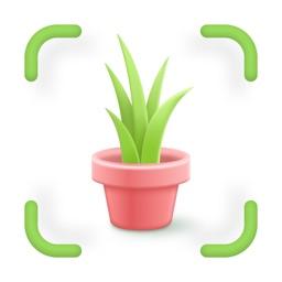 Flower, Plant, Weed Identifier