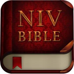 NIV Bible: Audio Bible Offline