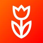 Flowwow: Подарки, Цветы и Еда на пк