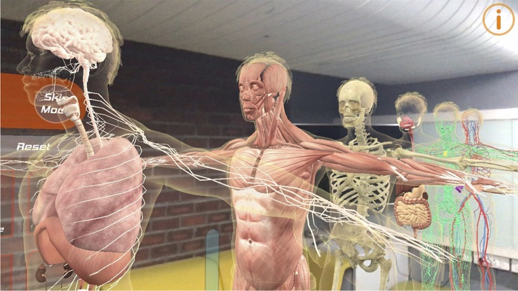 Human Anatomy 4d Mixed Reality By Irusu Technologies Private Limited