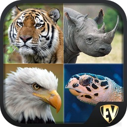 Endangered Animals SMART Guide