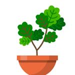 Terrarium: Garden Idle на пк