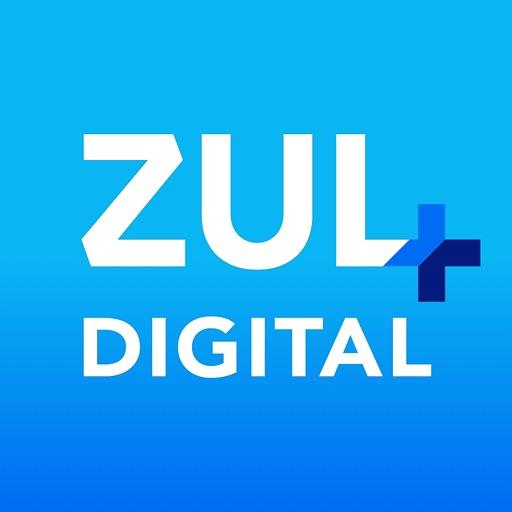 Zul+ IPVA, Pedágio e Consultas