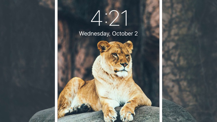 Fancy Wallpapers & Lock Screen screenshot-3