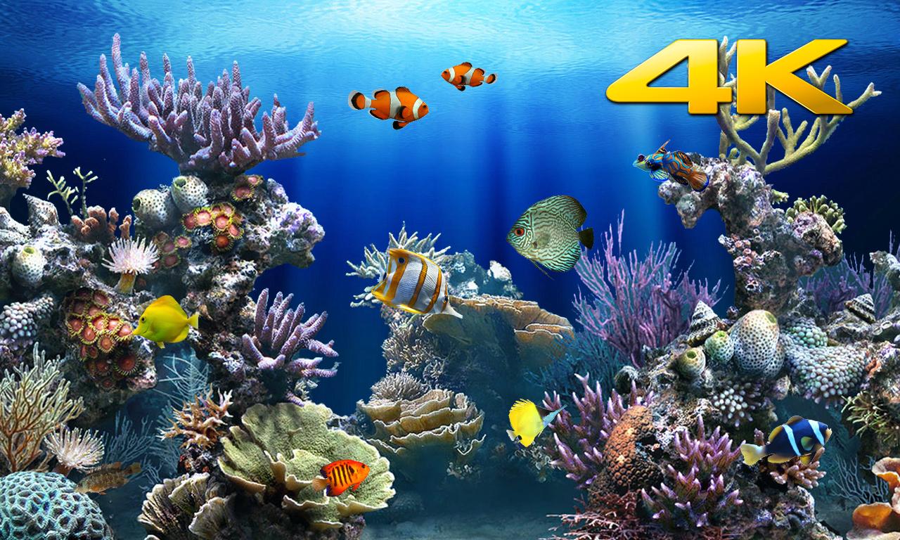 Aquarium 4K √