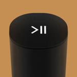 Cast & Control Speaker на пк